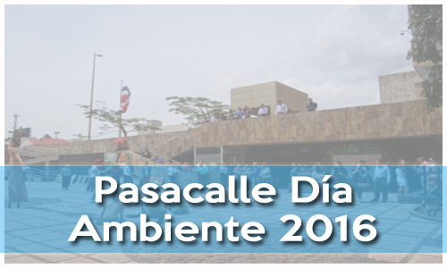 pasacalle.png